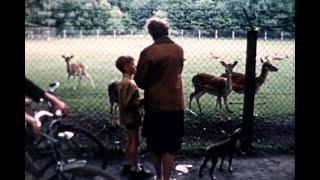 Hertenkamp Oisterwijk, circa 1960