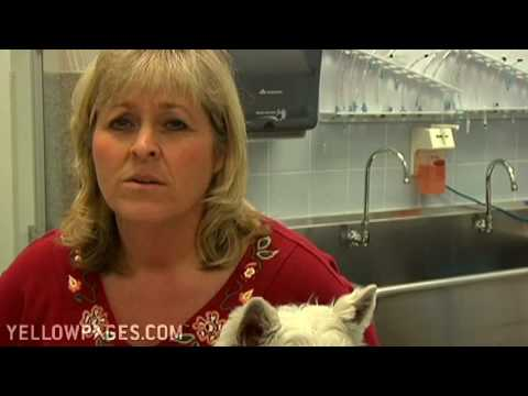Crofton Veterinarian Clinics Veterinary Housecall Service