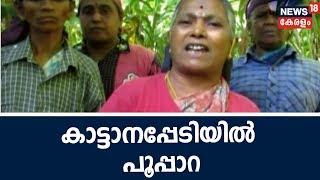 Naattu Varthamanam കൊലയാളി കൊമ്പനെ ഭയന്ന് പൂപ്പാറ; 8 മാസത്തിൽ കൊല്ലപ്പെട്ടത് 4 പേർ | 24th Sept 2018