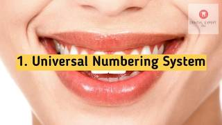 Dental Numbering How Dentists Number Our Teeth 2019 [DentalExpertPH] 720p