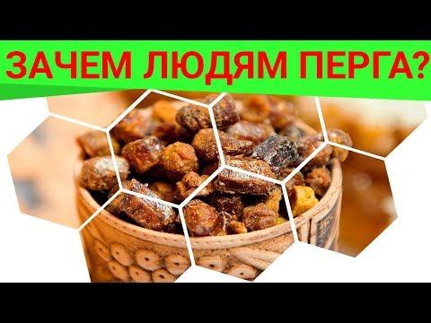 Зачем людям перга? Чем полезна перга? Полезные свойства перги! Об этом узнайте от Галины Топоровой!