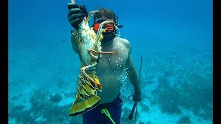 EPIC Bahama Vacation!!! {Catch Clean Cook} Sautéed Lobster and Onions!