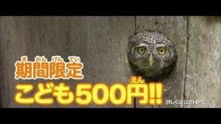 映画『シーズンズ2万年の地球旅行』30秒テレビCM