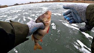 Леска на щуку для зимней рыбалки
