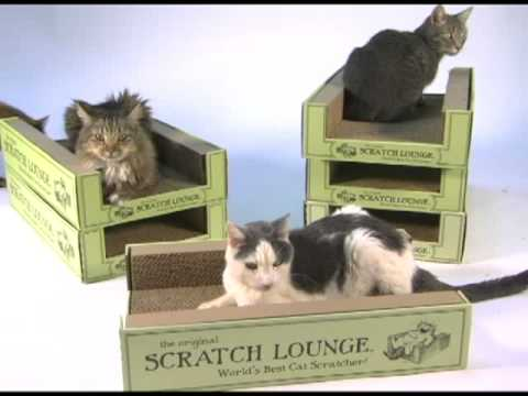 Scratch Lounge Classic Video