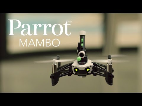 Parrot MAMBO - Official Video