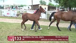 Video  de N (AREEJ DU VAL 2021) #1