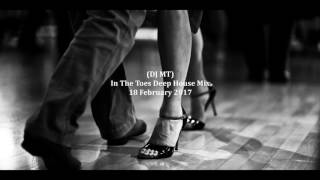 (DJ MT) - In The Toes Mix Deep House Mix - 18 February 2017