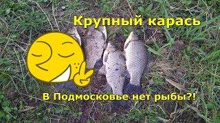 Ловля карася на поплавок в московской области