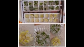 How To Make Flavored Ice Cubes | Summer Special | DIY Infused Ice Cubes | Summer Coolers | Ice Hacks