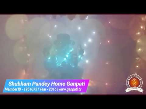 Shubham Pandey Home Ganpati Decoration Video