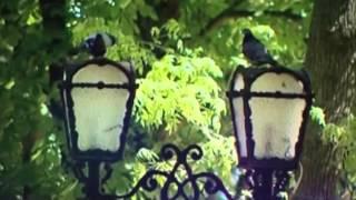 Семь чудес Украины: Чернигов