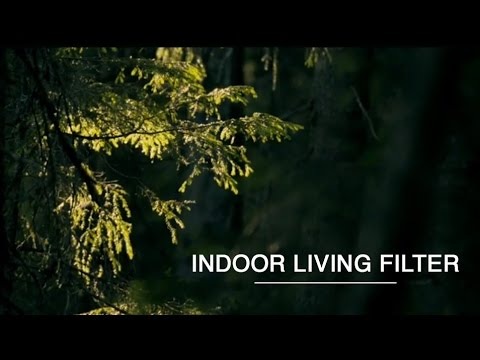 Indoor Living Filter  – Green Renaissance