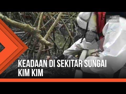 Pencemaran bahan kimia: Keadaan di sekitar Sungai Kim Kim