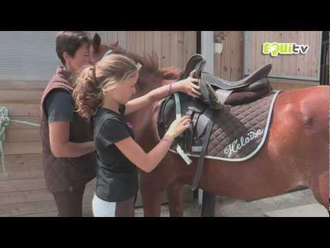 Le stimulant de cheval dans les conditions domestiques la recette féminin