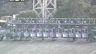 2002年第05回黒船賞サウスヴィグラス