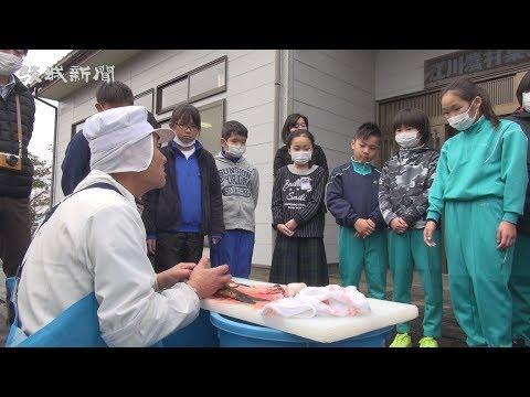地域の食文化学ぶ 白鳥西小、上島西小 水産業の理解深める