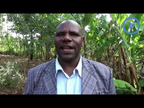 Kenya Union of Small Scale Tea Owners defends Munya, Kiunjuri over poor tea bonuses