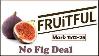 No Fig Deal