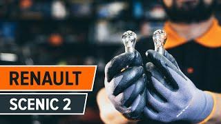 Cum se inlocuiesc becul luminii de avarii pe RENAULT SCENIC 2 [TUTORIAL]