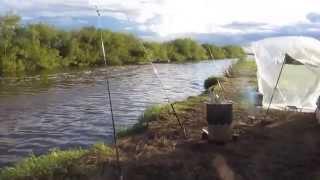 Рыбалка в нсо на реке каргат