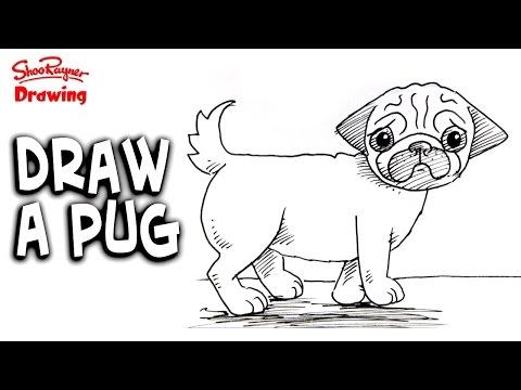 How to draw a pug   Shoo Rayner