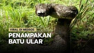 Viral di Medsos Penampakan Batu Menyerupai Ular dari Thailand Ternyata Terdapat di Sukabumi