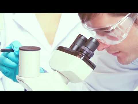 Top 5 ventajas de estudiar ingeniería bioquímica