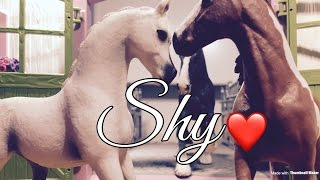 Schleich Music video shy