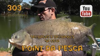 Programa Fishingtur na TV 303 - Hotel Fazenda Point da Pesca