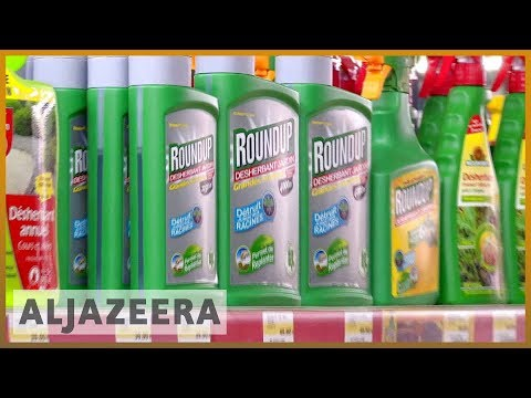 🇺🇸 US jury orders Monsanto to pay $289m in Roundup cancer trial | Al Jazeera English