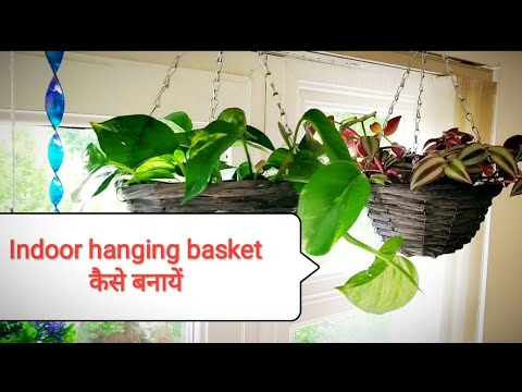 How to make beautiful Indoor hanging basket/Organic Gardening