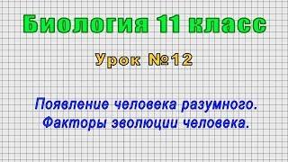Биология 11 класс Урок 12