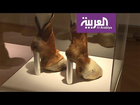 العرب اليوم - شاهد: قصص أحذية الأثرياء منذ العصور الوسطى