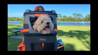 Zweistöckiger Hunderucksack für 2 Tiere oder XL Rucksack für 1 Tier