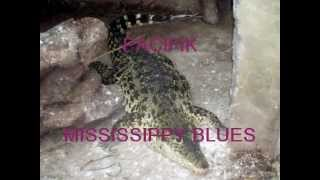 PACIFIK   MISSISSIPPY BLUES