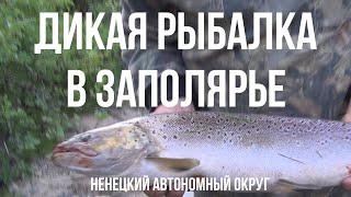 О рыбалке и охоте в ненецком округе