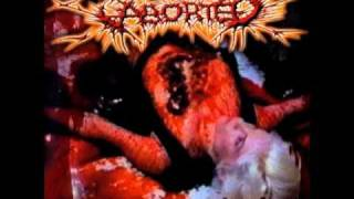 Aborted - Necro Eroticism