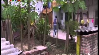 Phim Việt Nam - Cuốn theo ngọn gió đông - Tập 2/2 - Phim cuối tuần