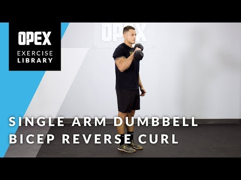 Single-Arm Dumbbell Bicep Reverse Curl - OPEX Exercise Library