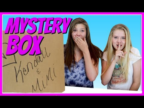 MYSTERY BOX WITH KENDALL AND MIMI || SURPRISE BOX || Taylor and Vanessa