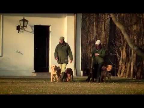 """David&Stefanie Latham """"Secret to success"""" trailer 1.Puppy stage"""