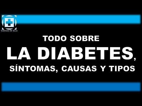Dieta para las personas que tienen elevados de insulina