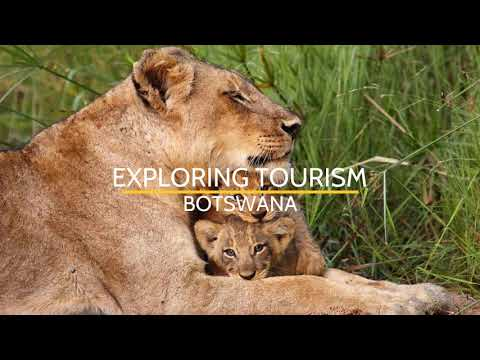 Travel Agency Business in Botswana