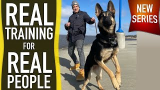Actuality Canine Coaching REVEALED!