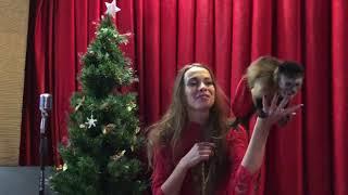24 декабря 2017 г. Биткоин упадёт? А обезьяны останутся?
