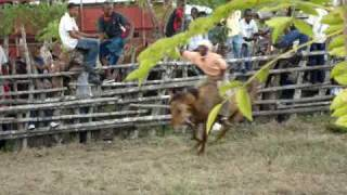 preview picture of video 'Rodeo  en Haiti Mejia de El seibo,Rep.Dominicana 3'