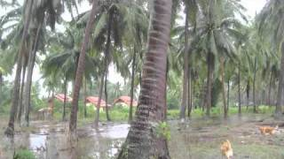 preview picture of video 'Tropical Cyclone - Koh Samui - November 2010'