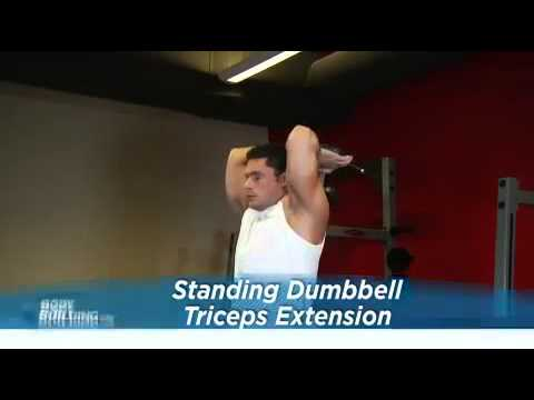 Triceps - Standing Dumbbell Triceps Extension Exercise Guide
