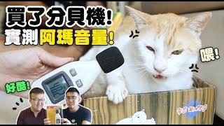 【黃阿瑪的後宮生活】買了分貝機!實測阿瑪音量!